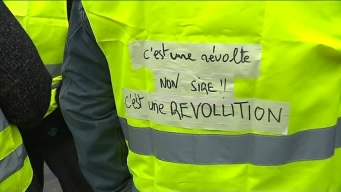 Revolt Revolution